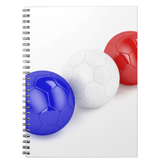 Football balls with flag of France Notebook