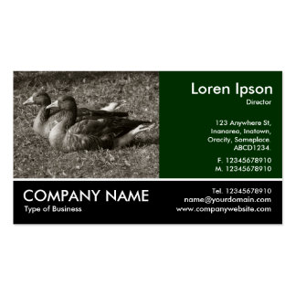 Footed Photo - Greylag Geese (Sepia) Business Card