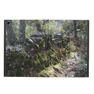 Footpath covered with nature in the mountain range iPad air cases