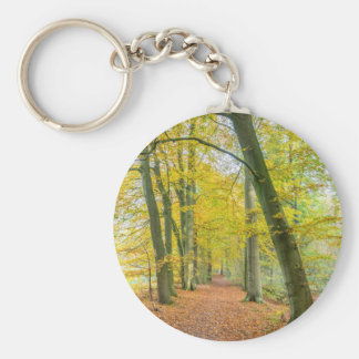 Footpath in forest covered with fallen leaves keychain