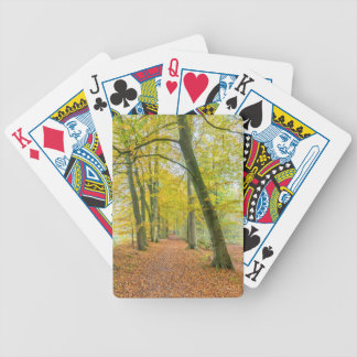 Footpath in forest covered with fallen leaves poker deck