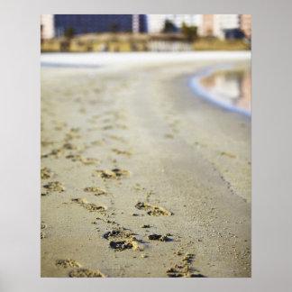 Footprint in coast. posters