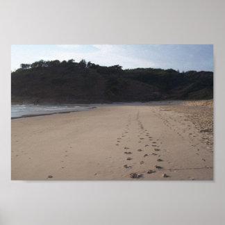 Footprints In Sand At Grassy Head Beach Print
