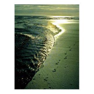 Footprints In Sand, Piha, North Island Postcard