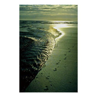 Footprints In Sand, Piha, North Island Poster