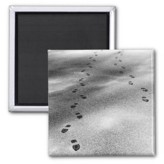 Footprints in Snow Square Magnet