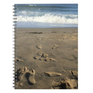 Footprints in the sand, beach and waves notebook
