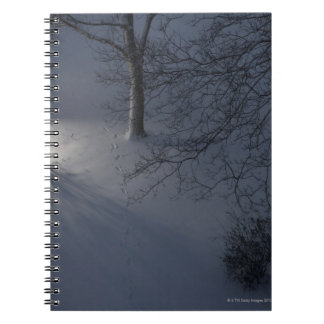 Footprints on Snow, Hamburg, Germany Notebook