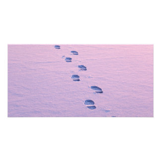 Footsteps on snow photo cards