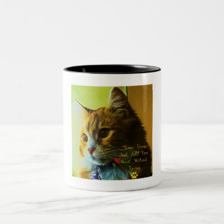 For Cat's Lovers Two-Tone Coffee Mug