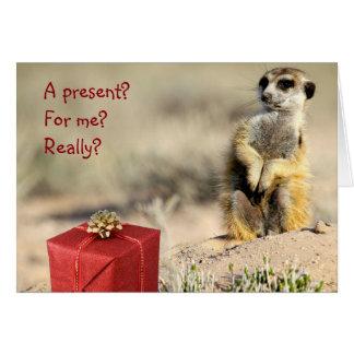 For me? - A KMP Christmas Card