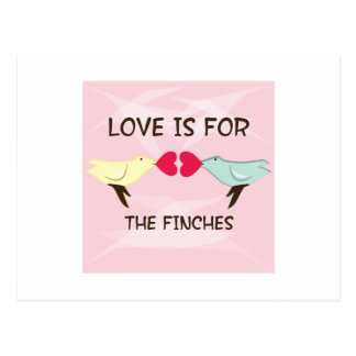 For The Finches Postcard