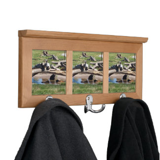 For the Living Room Coat Racks