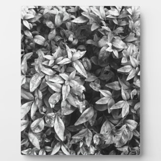 For the Love - Black & White Floral Plaque
