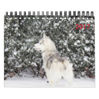 For the Love of dogs Calendar