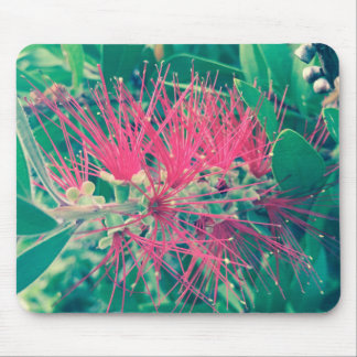 For the Love of Nature - Aus Native Mouse Pad