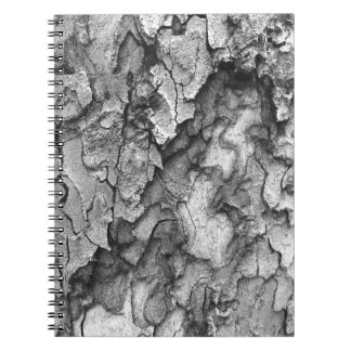 For the Love of Nature - Black & White Bark Notebooks