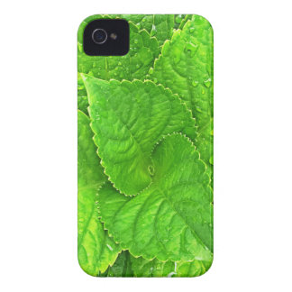 For the Love of Nature Case-Mate iPhone 4 Case