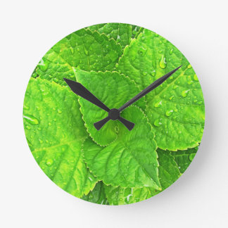 For the Love of Nature Round Clock