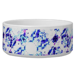 For the Love of Pets - Dog Bowl