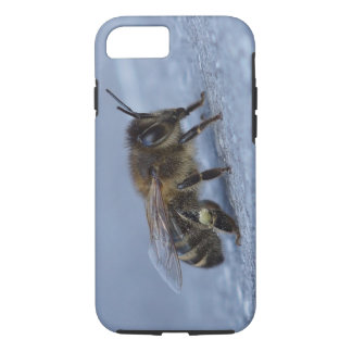 Foraging bee iPhone 8/7 case