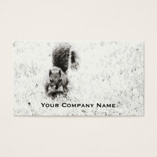 Foraging Squirrel Custom Business Cards