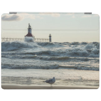 Force Behind Beauty iPad Cover