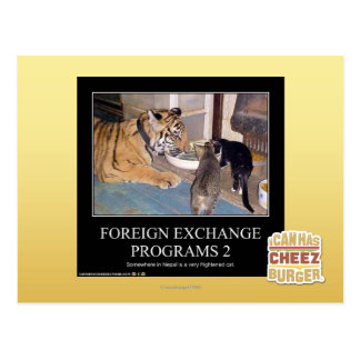 Foreign Exchange Programs 2 Postcard