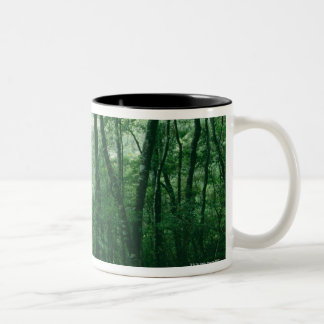 Forest 9 Two-Tone coffee mug