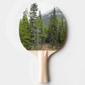 Forest and Mountain Scene Paddle