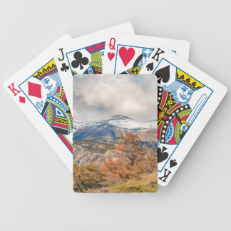 Forest and Snowy Mountains, Patagonia, Argentina Bicycle Playing Cards
