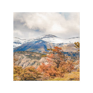 Forest and Snowy Mountains, Patagonia, Argentina Canvas Print