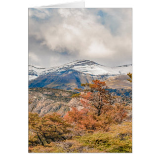 Forest and Snowy Mountains, Patagonia, Argentina Card