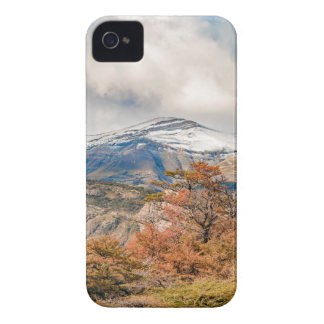 Forest and Snowy Mountains, Patagonia, Argentina Case-Mate iPhone 4 Case