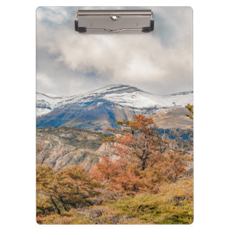 Forest and Snowy Mountains, Patagonia, Argentina Clipboard
