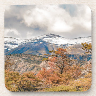 Forest and Snowy Mountains, Patagonia, Argentina Coaster
