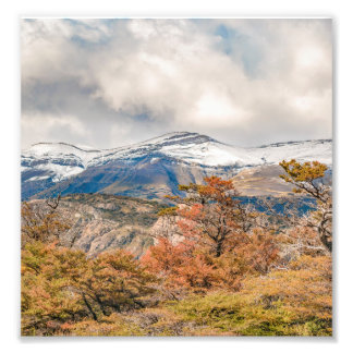 Forest and Snowy Mountains, Patagonia, Argentina Photo Print