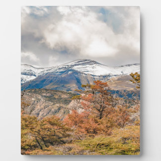 Forest and Snowy Mountains, Patagonia, Argentina Plaque