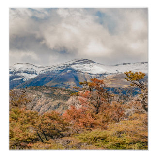 Forest and Snowy Mountains, Patagonia, Argentina Poster