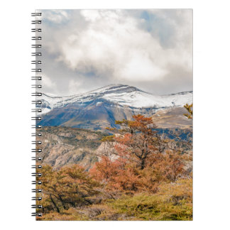 Forest and Snowy Mountains, Patagonia, Argentina Spiral Notebook