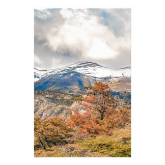 Forest and Snowy Mountains, Patagonia, Argentina Stationery