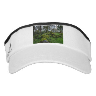 Forest at Blarney Castle Visor