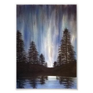 Forest Aurora 5x7 Print