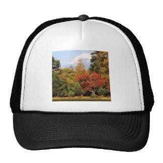 Forest Autumn Color Highlands Scotland Trucker Hat