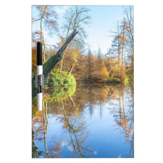 Forest autumn landscape with pond dry erase board