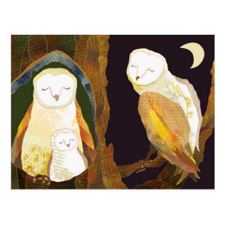 Forest Barn Owl Family Postcard