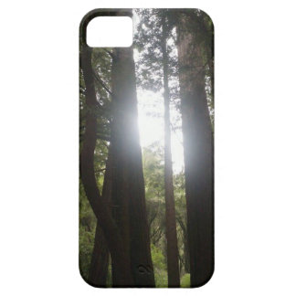 Forest Beauty iPhone 5 Cover