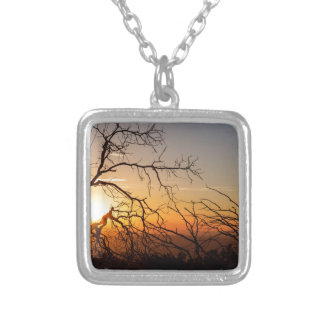 Forest Branches In The Sunset Light Silver Plated Necklace