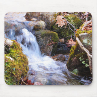 Forest Brook Mousepad