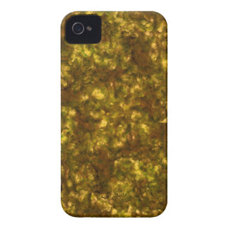 Forest Canopy Saturn iPhone 4 Case-Mate Cases